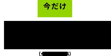今だけ1,000円(全国送料無料)
