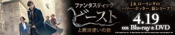 ファンタスティック・ビーストと魔法使いの旅 4.19 ON SALE!