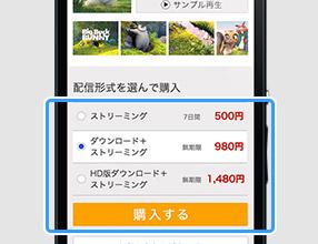 動画コンテンツを簡単購入