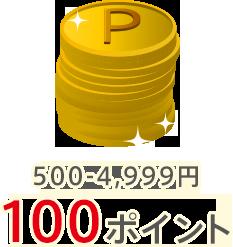 500-4,999円:100ポイント