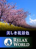 美しき花景色【RELAX WORLD】