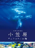 世界自然遺産 小笠原~ボニンブルーの海~