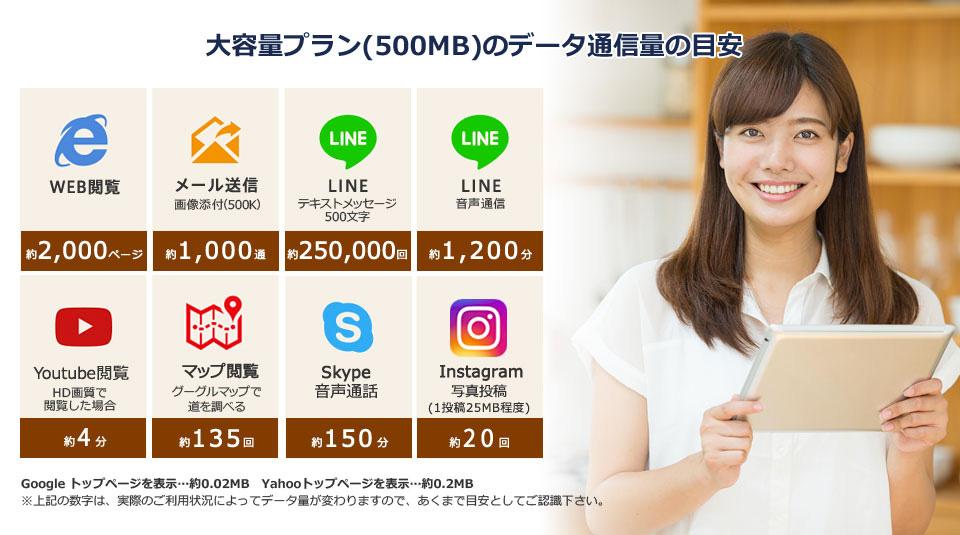 大容量プラン(500MB)のデータ通信量の目安