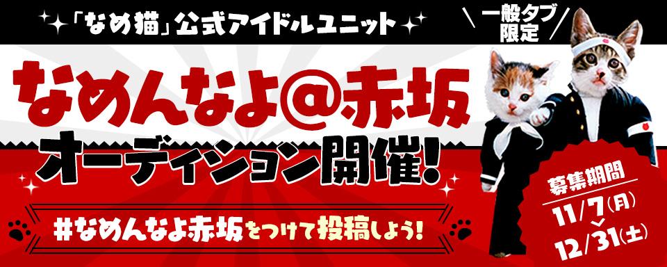 TV-CMで話題の「なめ猫」公式アイドルユニット「なめんなよ@赤坂」オーディション開催!