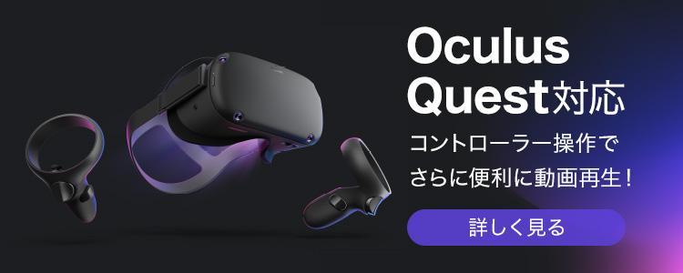 Oculus Quest対応 コントローラー操作でさらに便利に動画再生!
